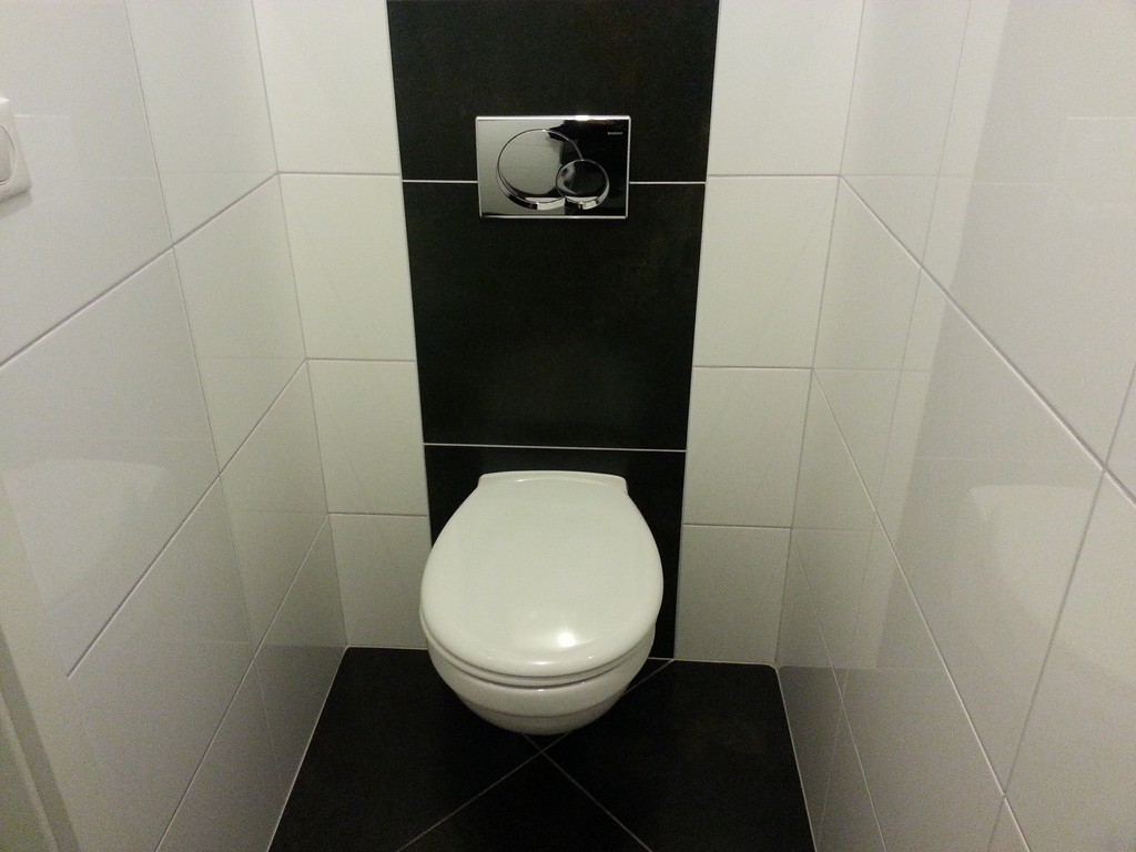 Carrelage toilette suspendue for Modele carrelage toilette